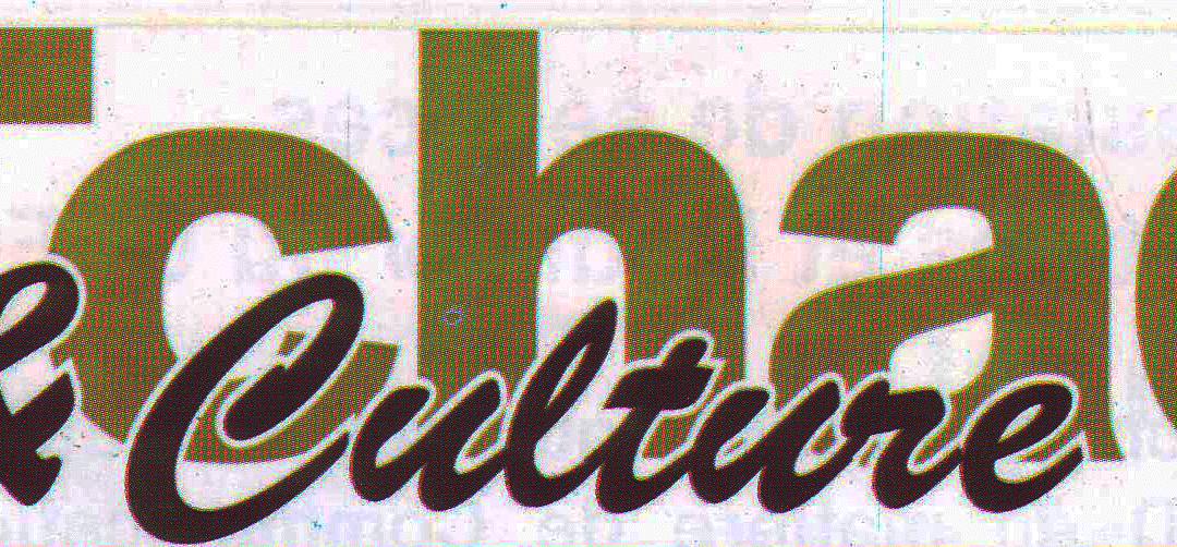 EDITORIAL T&C 381